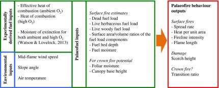palaeofire model